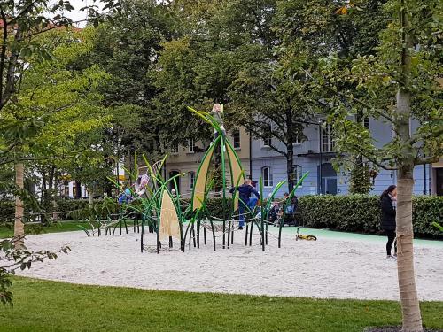 Josephsplatz 13 - Kletterpflanze